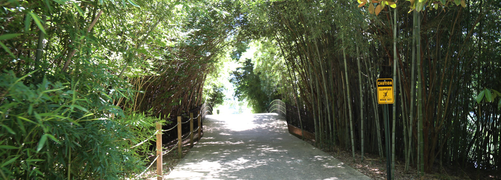 Louisiana Purchase Gardens & Zoo monroe, la